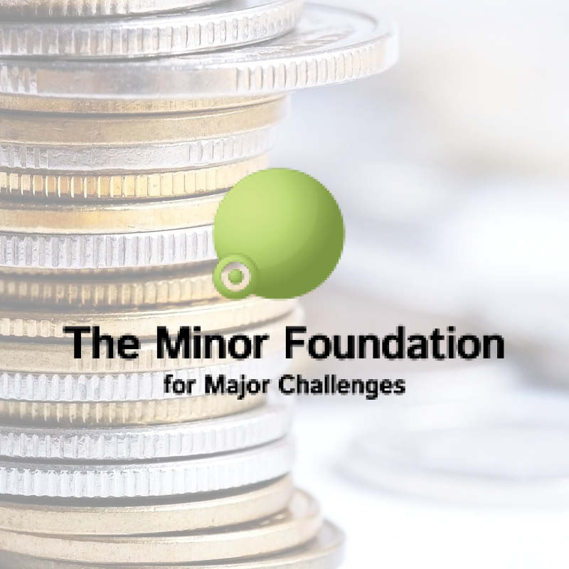 The Minor Foundation for Major Challenges